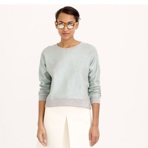 J Crew Sweatshirt Metallic Long Sleeve Crop